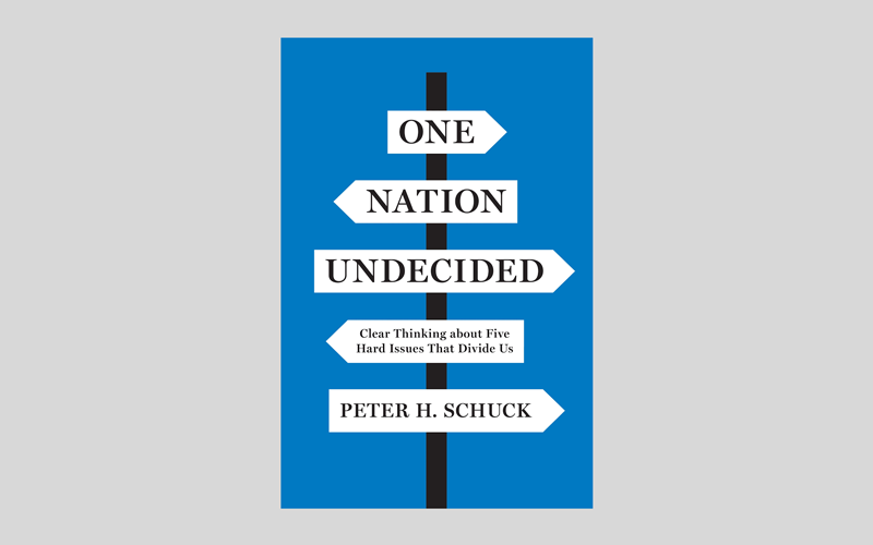 Robert Rosenkranz Recommended Reading On Nation Undecided Peter Schuck
